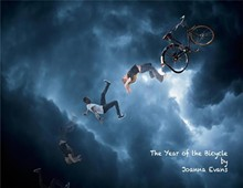 371ef0c8_the_year_of_the_bicycle.jpg