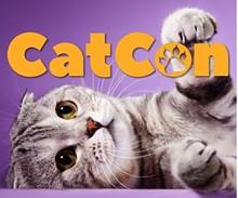 catcon.jpg