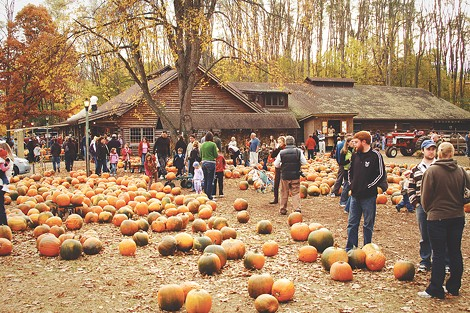 "During the fall, Powers Farm Market offers fresh apple cider, candy apples, and the ""world's largest teepees."" - PHOTO BY MATT DETURCK"