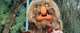 the_top_25_muppets_history_ranked_1322263900_jpg-magnum.jpg