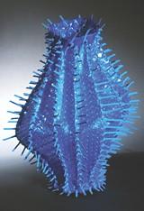 COURTESY OF MEMORIAL ART GALLERY - Emily Dvorin, Natatorium - Cactus (2004). Swimming pool cover, cable ties