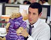 "Exploring     his feline side: Adam Sandler in ""Anger Management."""