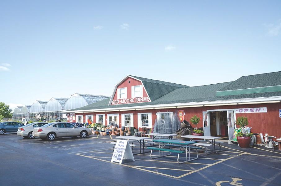Gro-Moore Farms in Henrietta. - FILE PHOTO