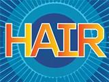 hairblueshunlogo_jpg-magnum.jpg