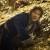 "FILM REVIEW: ""The Hobbit: The Desolation of Smaug"""