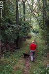 Mendon's natural features include Mendon Ponds Park.
