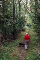 Mendon's natural features include Mendon Ponds Park. - PHOTO BY MATT DETURCK