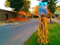 Rochester's bike boulevard experiment