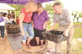 Stomp grapes at Casa Larga Vineyards' Purple Foot Festival. - PHOTO BY LARISSA COE
