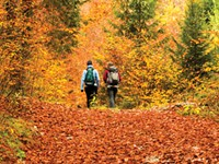 Let nature nurture you with these fall recreation activities