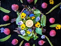 Salad days: edible flowers