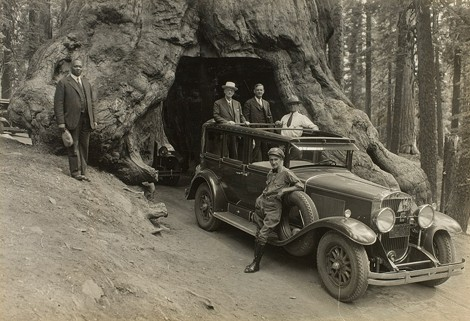 Audley D. Stewart's image of George Eastman and companions riding through Wawona Tree in Yosemite National Park in 1930. - PHOTO PROVIDED
