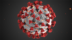 An illustration of the coronavirus, COVID-19. - PHOTO PROVIDED BY CENTERS FOR DISEASE CONTROL AND PREVENTION