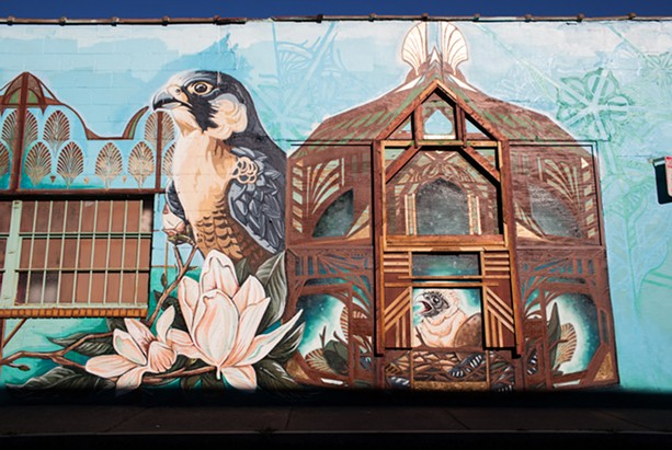 A detail of Rochester-based artist Sarah C. Rutherford's 2013 mural on the side of Natural Oasis on Monroe Avenue. - FILE PHOTO
