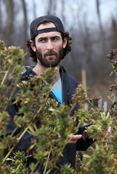 Zach Sarkis of Growing Family Farm said this may be the last year for hemp cultivation if Gov. Andrew Cuomo's new regulations on CBD are made law.