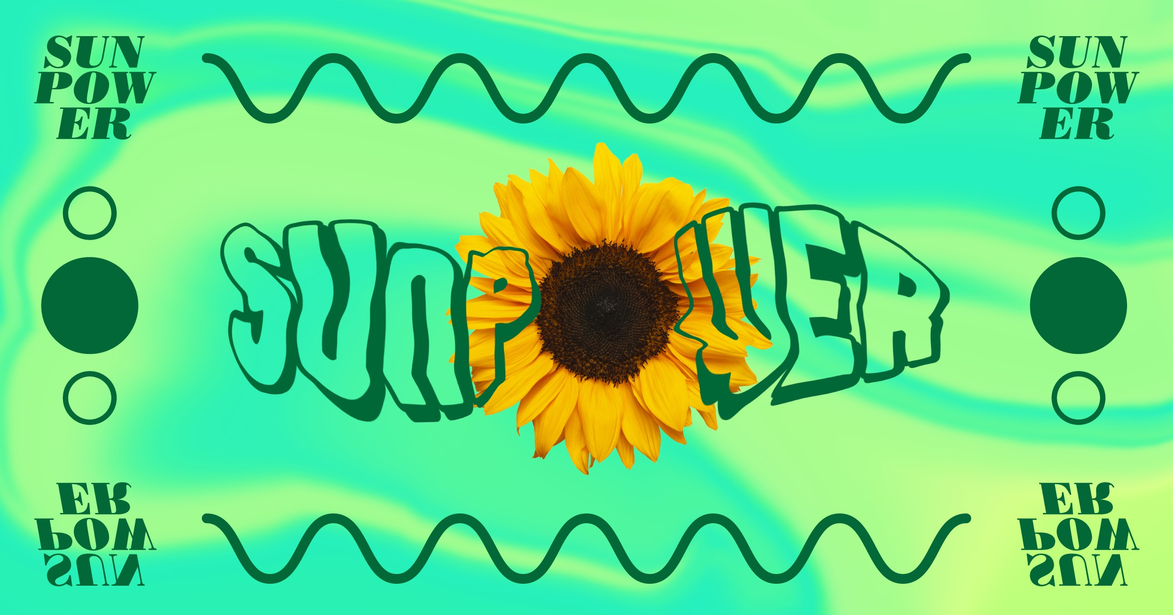 Joyful Learning In Kc Sunflowers And Summer Manual Guide