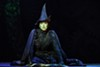 "<p>Jessica Vosk plays Elphaba in the touring production of ""Wicked,"" now onstage at the Auditorium Theatre.</p>"