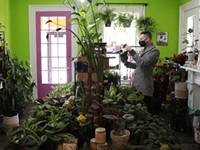 Rochester's rare plant market is booming
