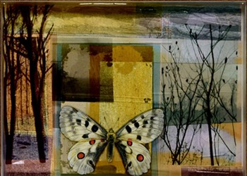 ART | Margery Pearl Gurnett: 'Reflecting Forward'