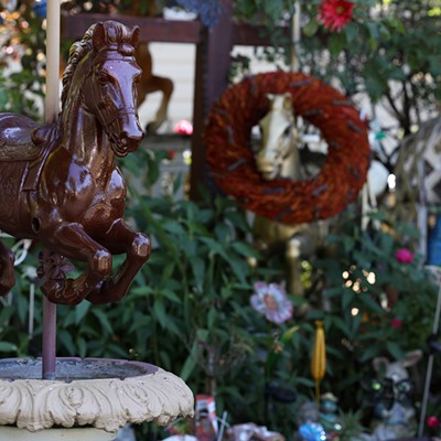 Where rocking horses of Puerto Rico prance freely