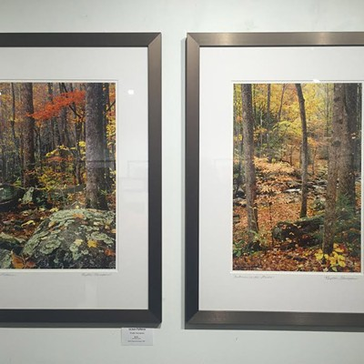 Weekend Photos: November 6-8