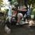 On North Street, rocking horses of Puerto Rico prance freely