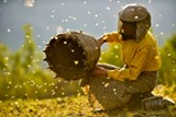 "PHOTO COURTESY NEON - Beekeeper Hatidze Muratova in the documentary, ""Honeyland."""