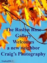 Roslyn Rose Gallery - Uploaded by roslynrose