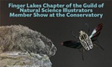 GNSI 2020 - Uploaded by Trumansburg Conservatory of Fine Arts