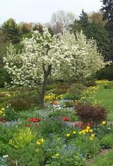 ellwanger_garden_b.jpg