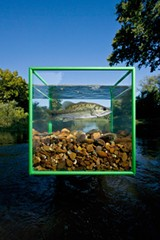 """PHOTO PROVIDED - David Liittschwager's """"One Cubic Foot"""" project set up in Duck River, Tennessee. The project is in Rochester this month, focusing on the Genesee River."""