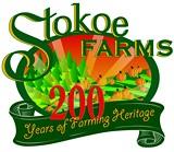 5335104c_stokoe_low_res_logo.jpg