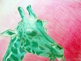 ff598403_anya_wansha_afg_giraffe_drawing_2015_16.jpg