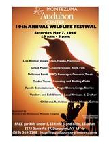 ae49cd1e_wildlife_festival_2016.jpg