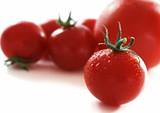 3d096c71_tomatoes_2x2.jpg
