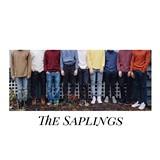 3b34fbd0_the_saplings.jpg