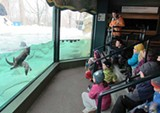 e834047c_zoocamp-winter-2015-education-staff-14.jpg