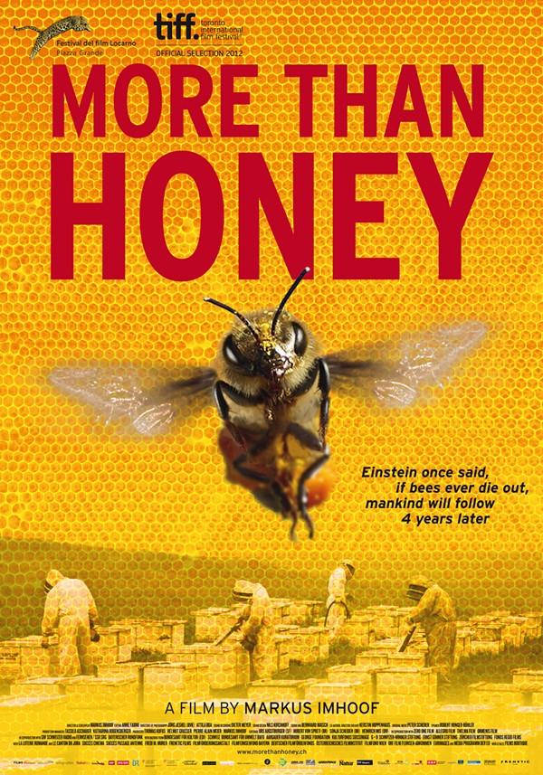 more-than-honey-poster.jpg