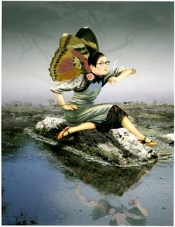chinese-butterfly_smoking-on-rockjpg