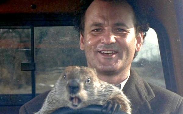 groundhog-day-ftr1.jpg