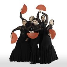 flamenco_austin-prophecies_alante_1mb_1_.jpg