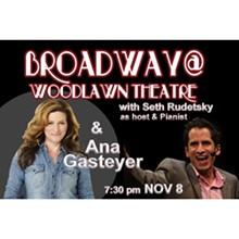 broadway-woodlawn-theatre-featuring-ana-gasteyer-72.jpeg