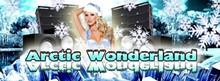 d0ded435_arctic_wonderland.jpg
