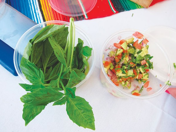 Award-winning salsa fixings — without cilantro. - HEATHER HERNANDEZ