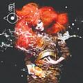 Björk: <em>Biophilia</em>