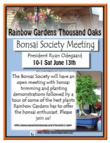 965e262c_bonsai_society_meeting_thousand_oaks.jpg