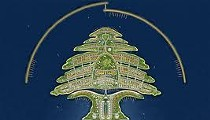 Cedar Conspiracy: from God to Big Pharma to TOMS