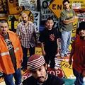 Echale! Latino Music Estyles featuring Ozomatli