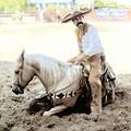 Fiesta: A Day in Old Mexico & Charreada