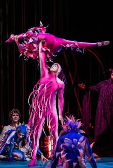 Dreams Of Flight: Cirque Du Soleil's 'Varekai' Lands In SA